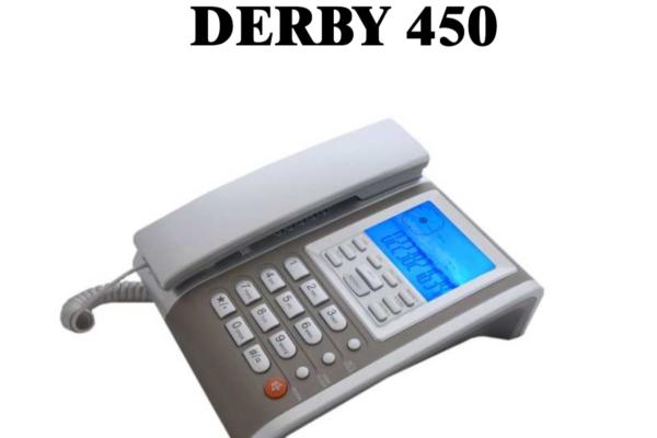 Derby 450 io
